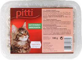 pitti Katzengras