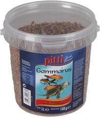 pitti Gammarus