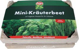 degro Mini-Kräuterbeet