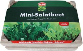 degro Mini-Salatbeet